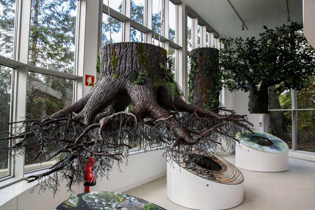 Nature Interpretation center in Sintra